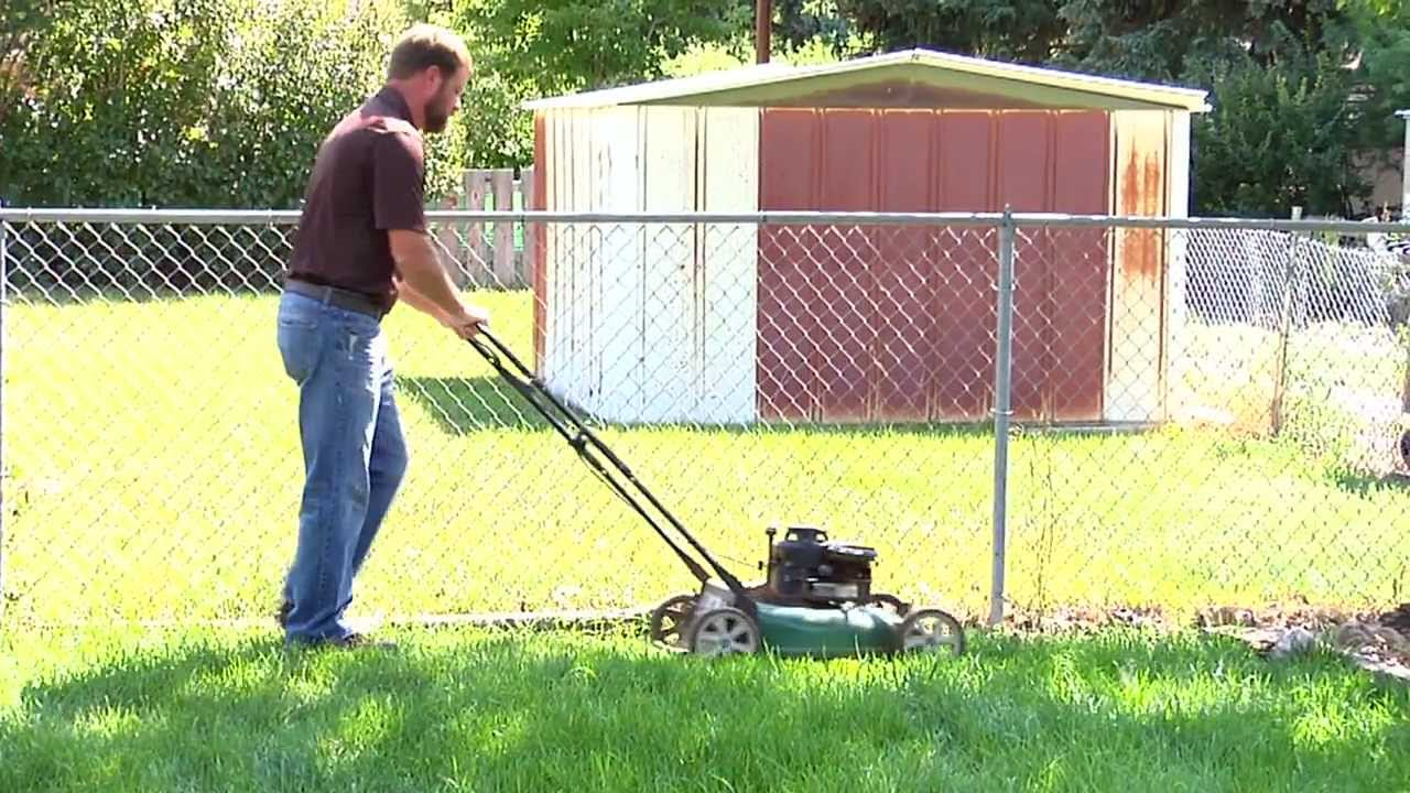 How to fix a patchy weedy lawn video organic vegan earth for How often should you mow your lawn